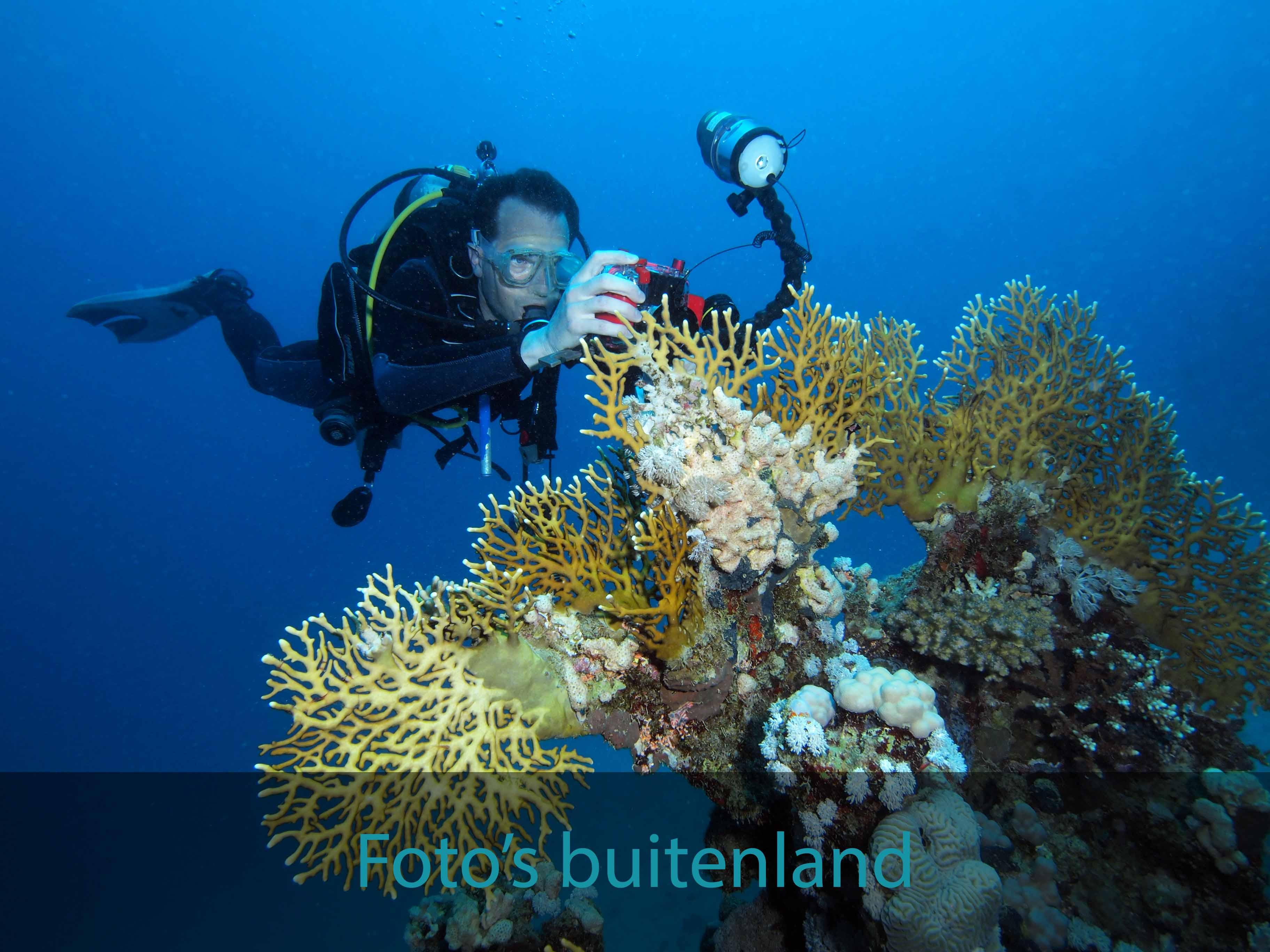 Foto's buitenland