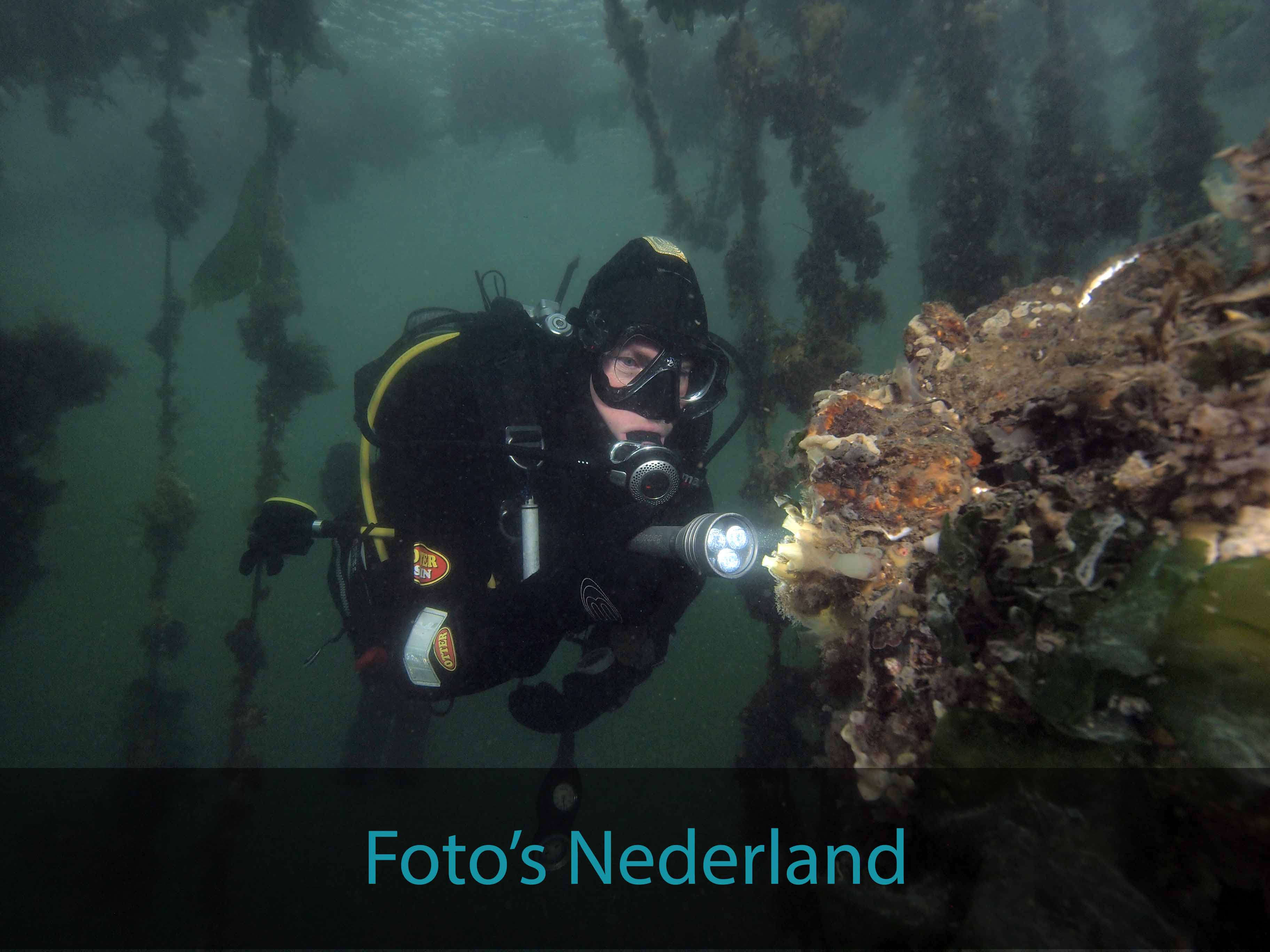 Foto's Nederland
